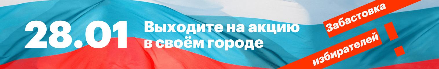 Всероссийская забастовка избирателей 28 января